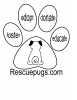 Southern Nevada Rescue Pugs Inc